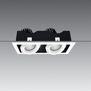 Down Light DBL Adjustable