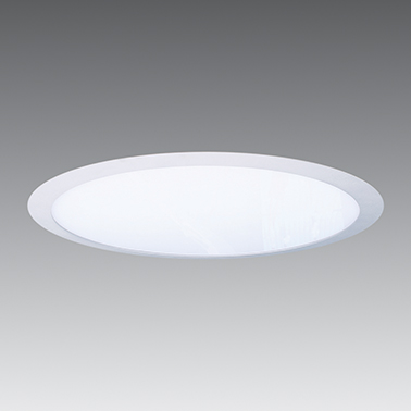 Flood LED Panel Light